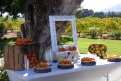 Mesa citricos